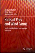Birds of Prey and Wind Farms, Analysis of Problems and Possible Solutions